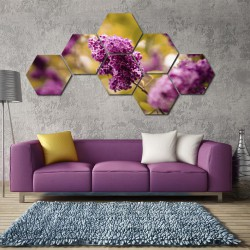 Set hexagonal Liliac
