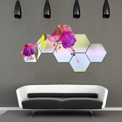 Set hexagonal Flori 02