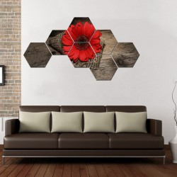 Set tablouri hexagonale Red Daisy