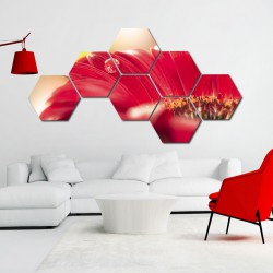 Set hexagonal Roua